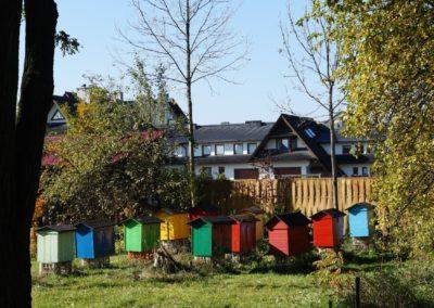 Beehives 1500 x 799