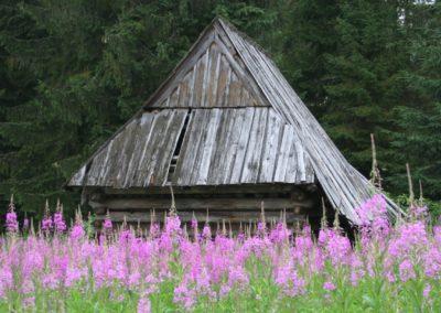 Shepherd hut
